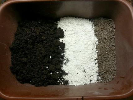 jordblandning av jord, perlit och hönsgödsel